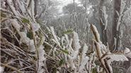 Chùm ảnh du lịch: Miền Bắc rét kỷ lục, băng tuyết phủ trắng nhiều tỉnh thành