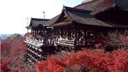 Những địa điểm tuyệt vời để ngắm lá mùa thu tại Nhật Bản