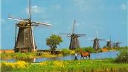 Bí mật về ngôi làng cối xay gió ở Hà Lan
