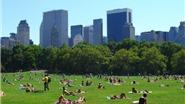 Top 10 công viên công cộng đẹp nổi tiếng ở các đô thị sầm uất thế giới