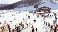Du lịch Hàn Quốc dịp tết âm lịch, tại sao không?