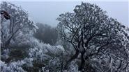 Sa Pa nhiệt độ xuống 5,2 độ C, băng giá phủ trắng đỉnh Fansipan