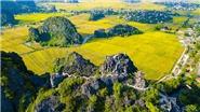 Ngắm mùa vàng Tam Cốc - Tràng An bên bờ sông Ngô Đồng đẹp nao lòng
