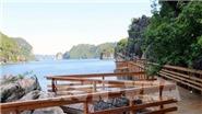 Quảng Ninh lên tiếng về thông tin xẻ núi và bê tông hóa đảo Soi Sim trên vịnh Hạ Long