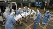 Dịch COVID-19: Chuyên gia Hong Kong cho biết tỷ lệ tử vong là 1,4%