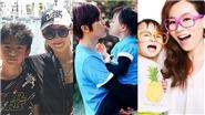 Ngô Ỷ Lợi, Trương Bá Chi và những người mẹ đơn thân mạnh mẽ của làng giải trí Hong Kong