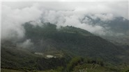 Lên Y Tý 'săn mây', ngắm ruộng bậc thang mùa nước đổ