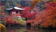 Du lịch Nhật Bản cần lưu ý gì?