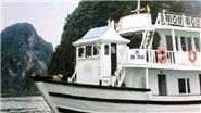 Vụ 'chuyến đi kinh dị' ở Hạ Long: Bộ VHTT&DL vào cuộc, yêu cầu xử lý nghiêm