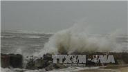 Ảnh hưởng áp thấp nhiệt đới: 20 người thương vong, mất tích sau trận mưa lớn kéo dài tại thành phố Nha Trang, Khánh Hòa