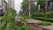 Bão số 2 suy yếu thành áp thấp nhiệt đới và đi vào các tỉnh Ninh Bình, Thanh Hóa