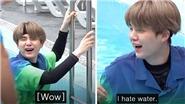 Suga BTS thảm thiết vật lộn với những trò chơi dưới nước