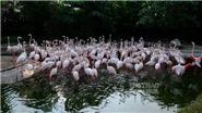 Khám phá công viên bán hoang dã Wanpi