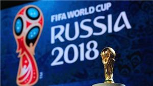 VTV lên tiếng về tranh cãi quán cà phê chiếu World Cup 2018 phải xin phép